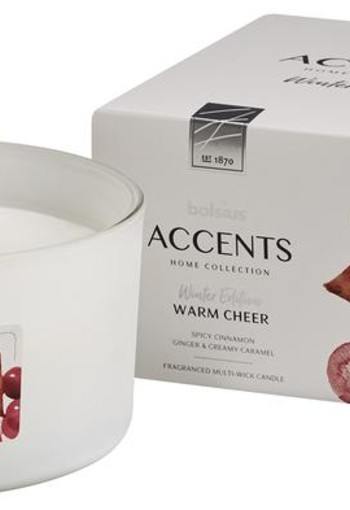 Bolsius Accents geurkaars multi lont warm cheer (1 stuks)