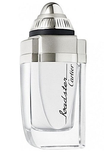 Cartier Roadster De Cartier - 100 ml - Eau de toilette